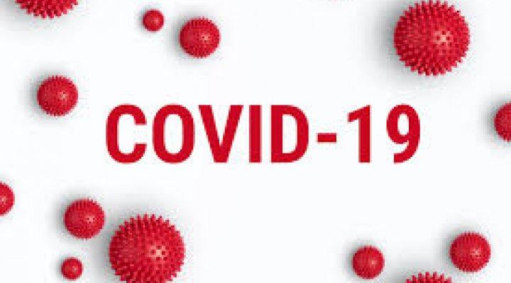 Subvencions de l'Ajuntament de Riudellots per la Covid-19 (Actualizació)